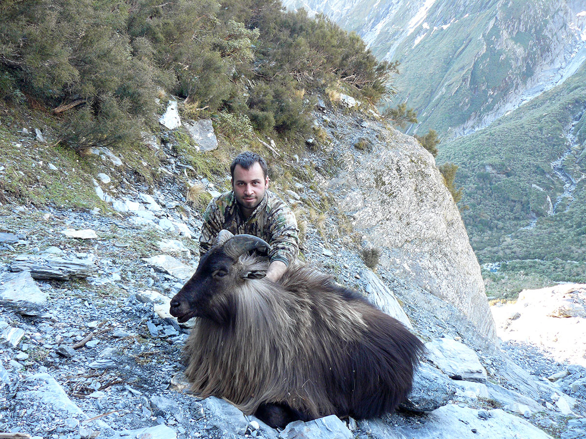 Tahr-trophy-hunting-in-New-Zealand2